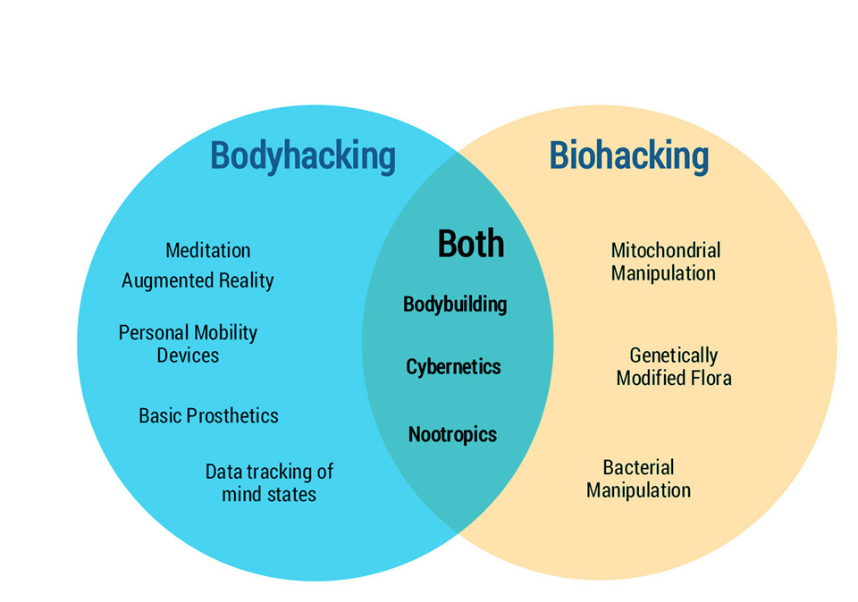 the difference between bodyhacking and biohacking and where they overlap